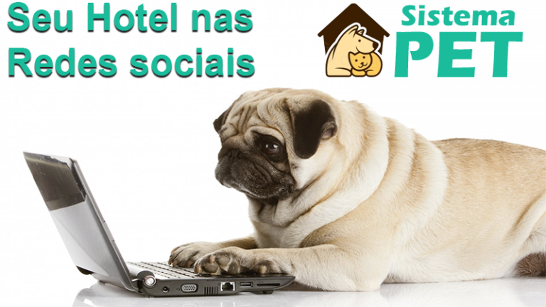 Seu Hotel nas Redes Sociais