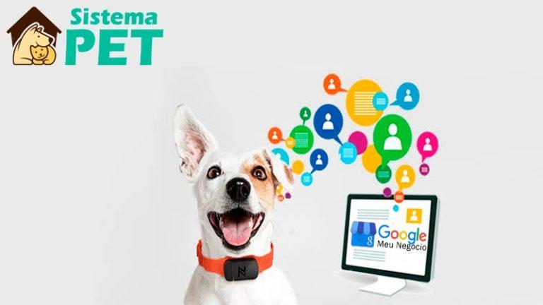 Google Meu Negócio no Mercado Pet