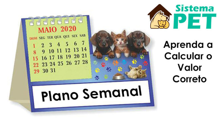 Como Calcular o Valor do Plano Semanal