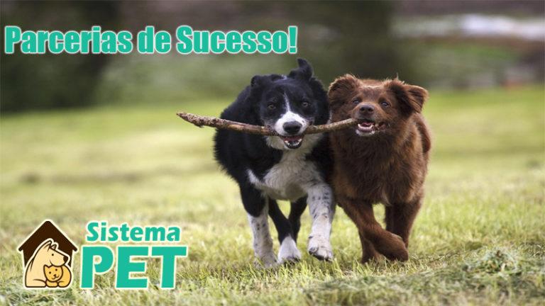 Parcerias de sucesso!