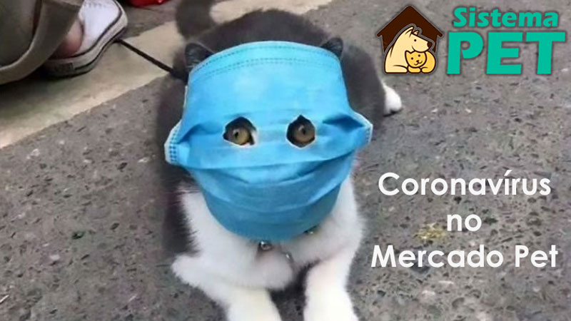 Coronavírus no MercadoPet