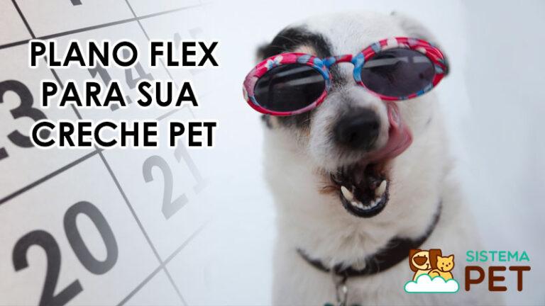Plano Flex para Creches de Pets